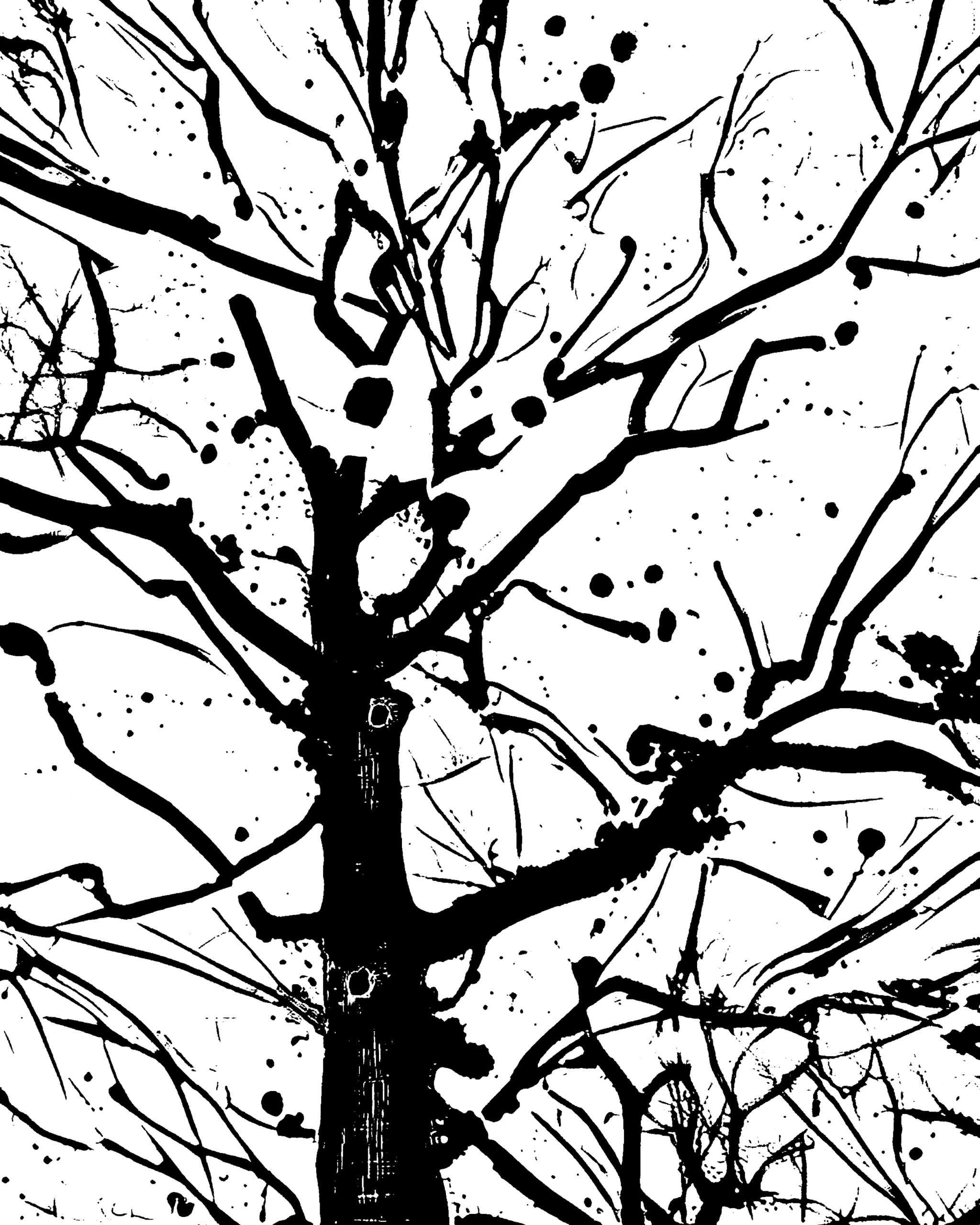 Winter tree - photography - kenlong | ello