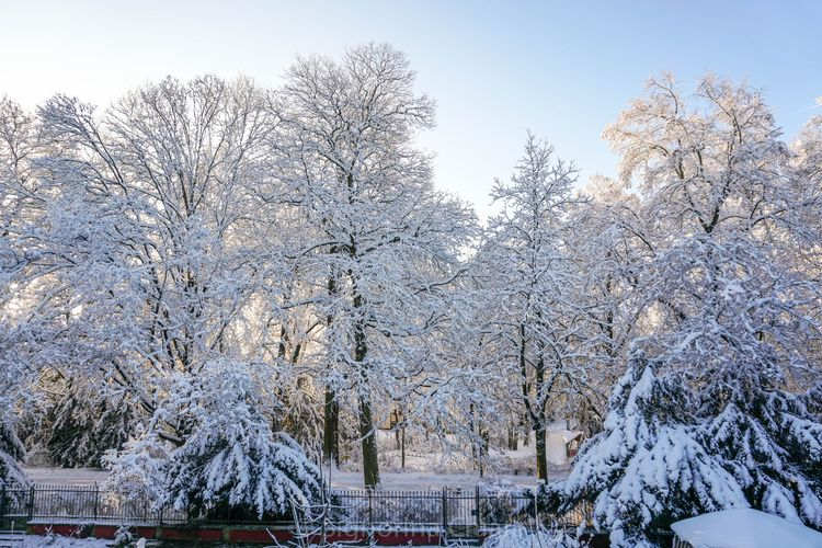 today bavaria - snow, winter, cold - chiaralucissimi | ello