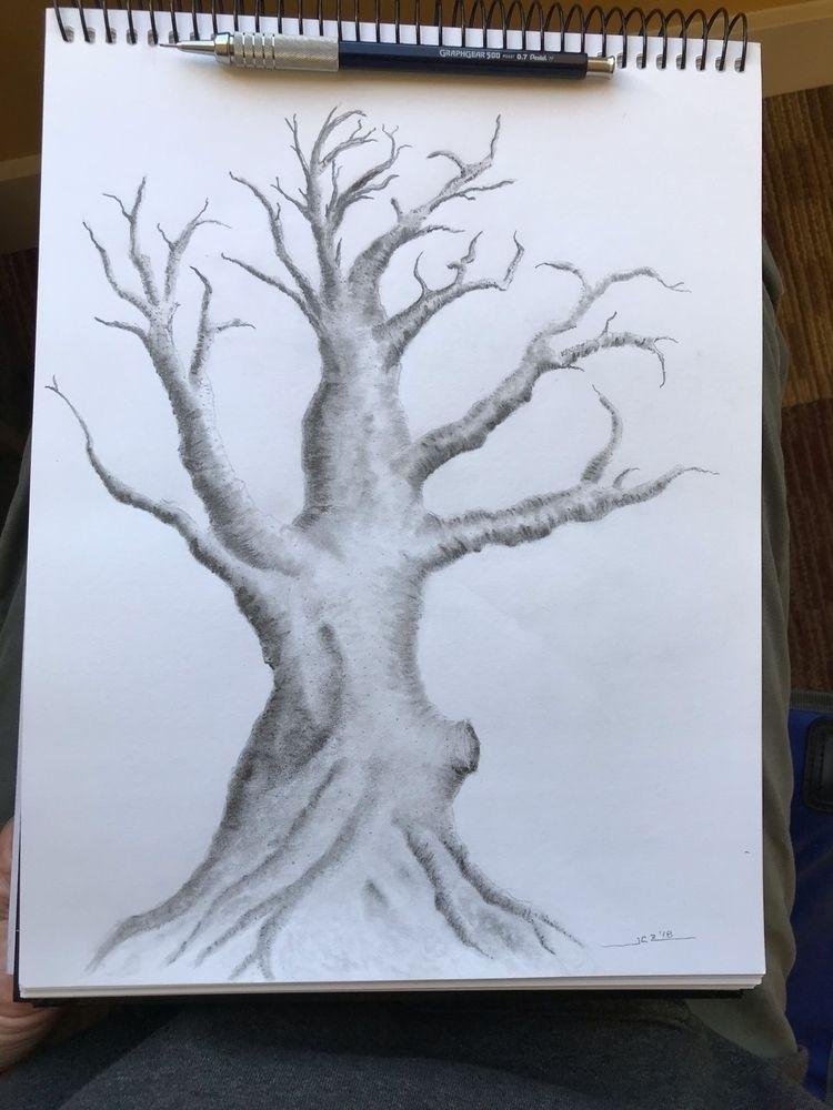 'Tree Study' (2018) trees guess - leapingbluehare | ello