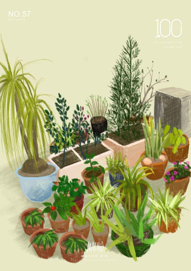 garden - machoxie   ello