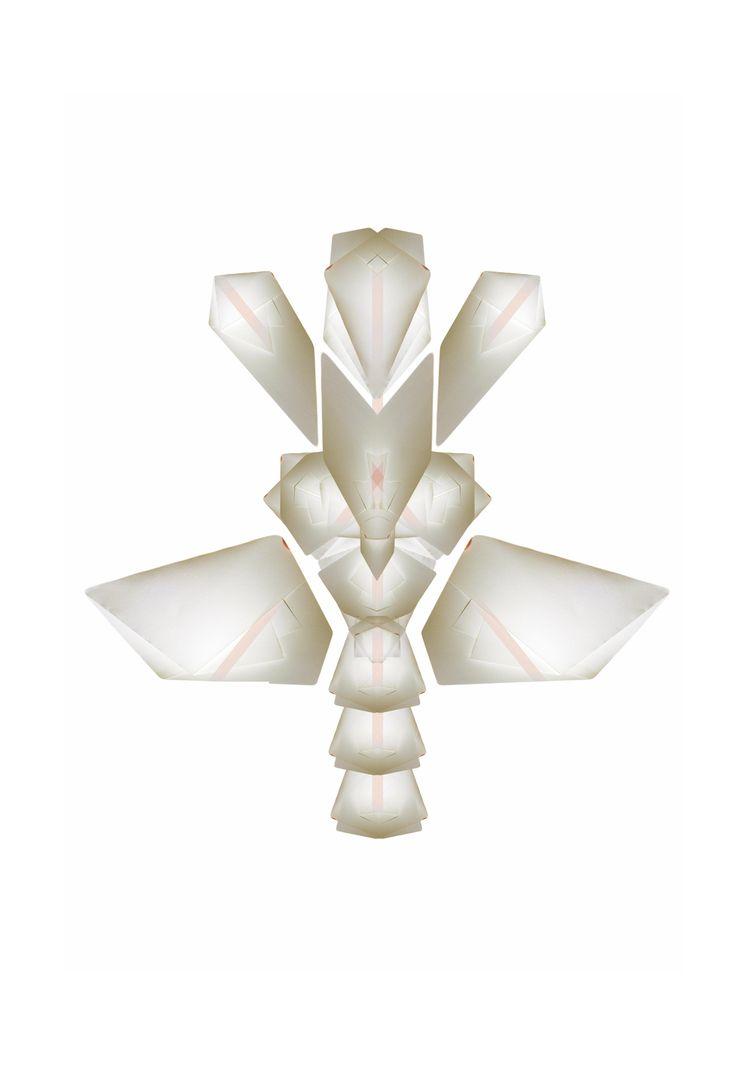Folding bones Xavier Segers / D - thelastdodo | ello