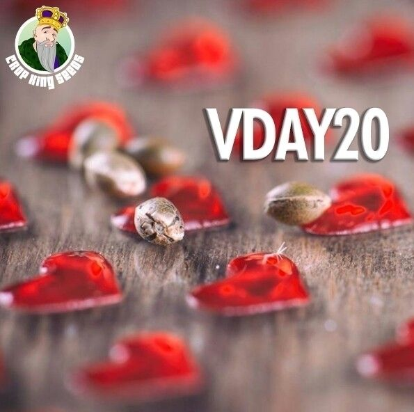 Day SALE 20% VDAY20 promo code - cropkingseeds | ello