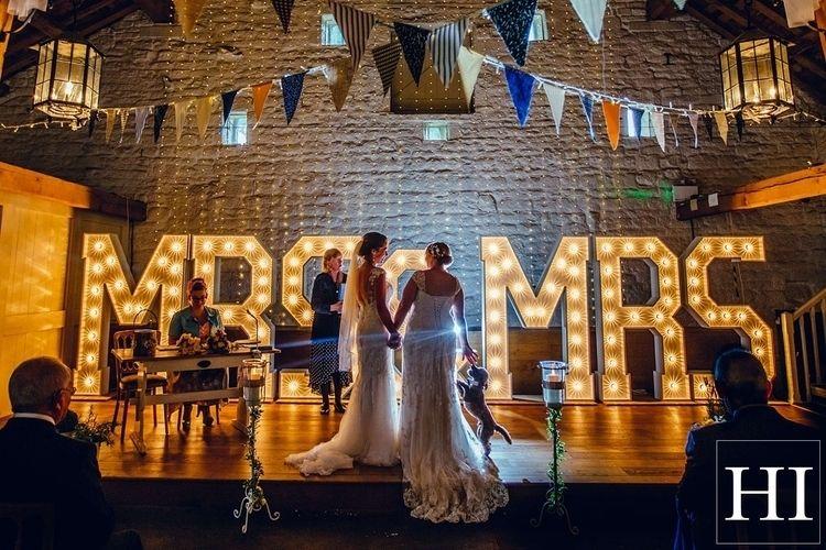 dog jumping married - wedding, weddingphotography - hamishirvinephotographer | ello