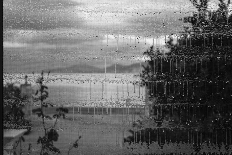 view wet window screen long nig - a2toz | ello
