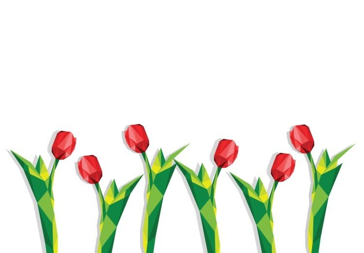 poly tulips - illustration, flowers - cilvako   ello