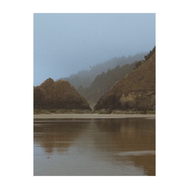 Foggy days coast - ivankosovan   ello