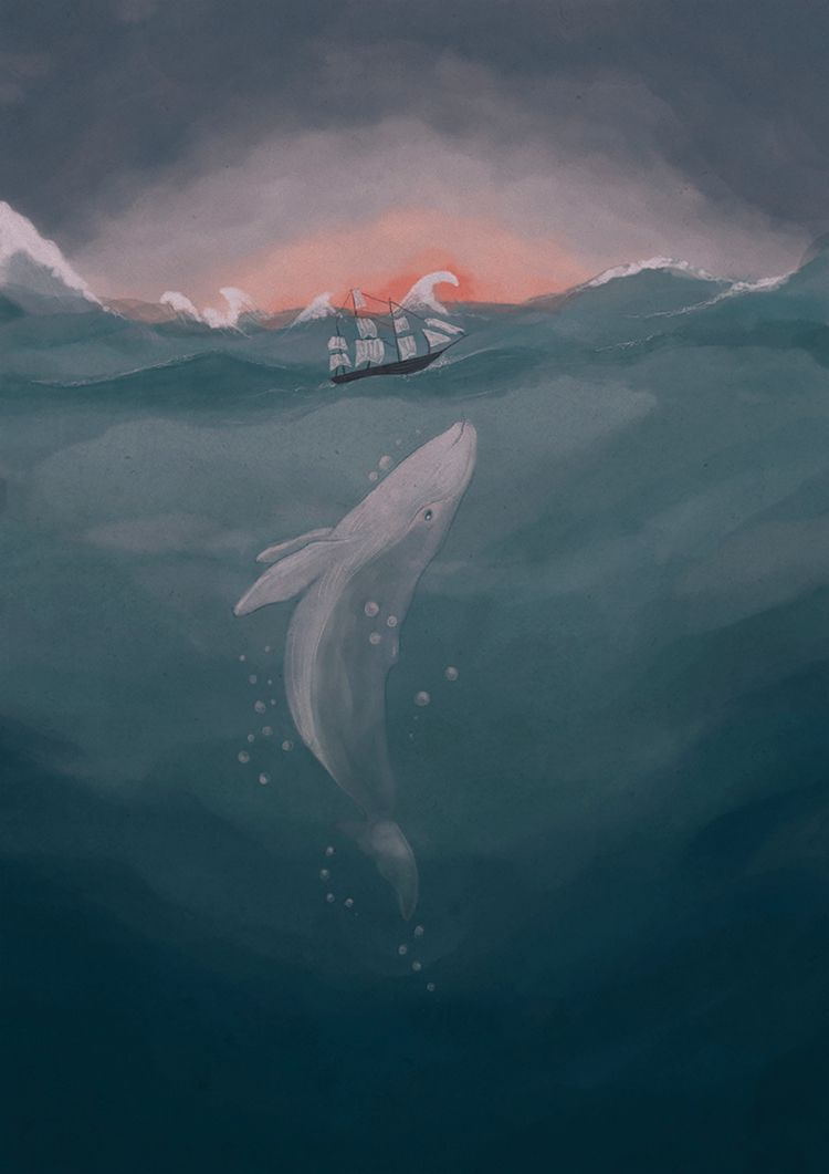 Moby Dick - illustration, illustrator - marinaembiz | ello