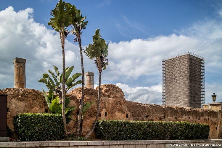 La Rabat en sur - Tour, Hassan, - kodadi | ello