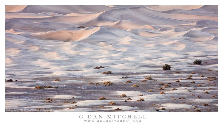 Dunes Meet Playa. Copyright 201 - gdanmitchell | ello