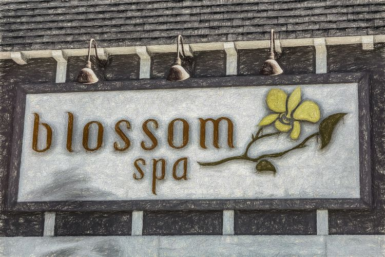 Blossom Spa Los Angeles, Califo - davidseibold | ello