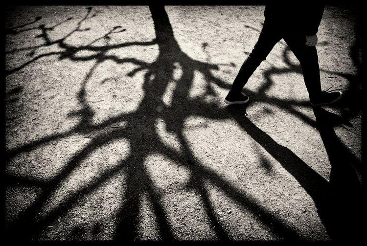 Untitled - analog, filmphotography - sselvejer | ello