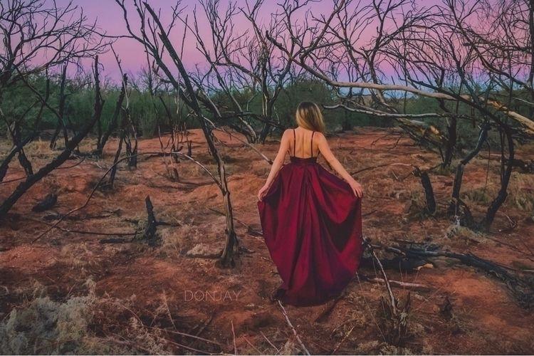 enchanted forest Beth - donjay | ello