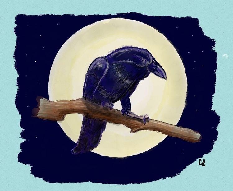 raven, corvinus, birds, bird - cliff-c-black | ello