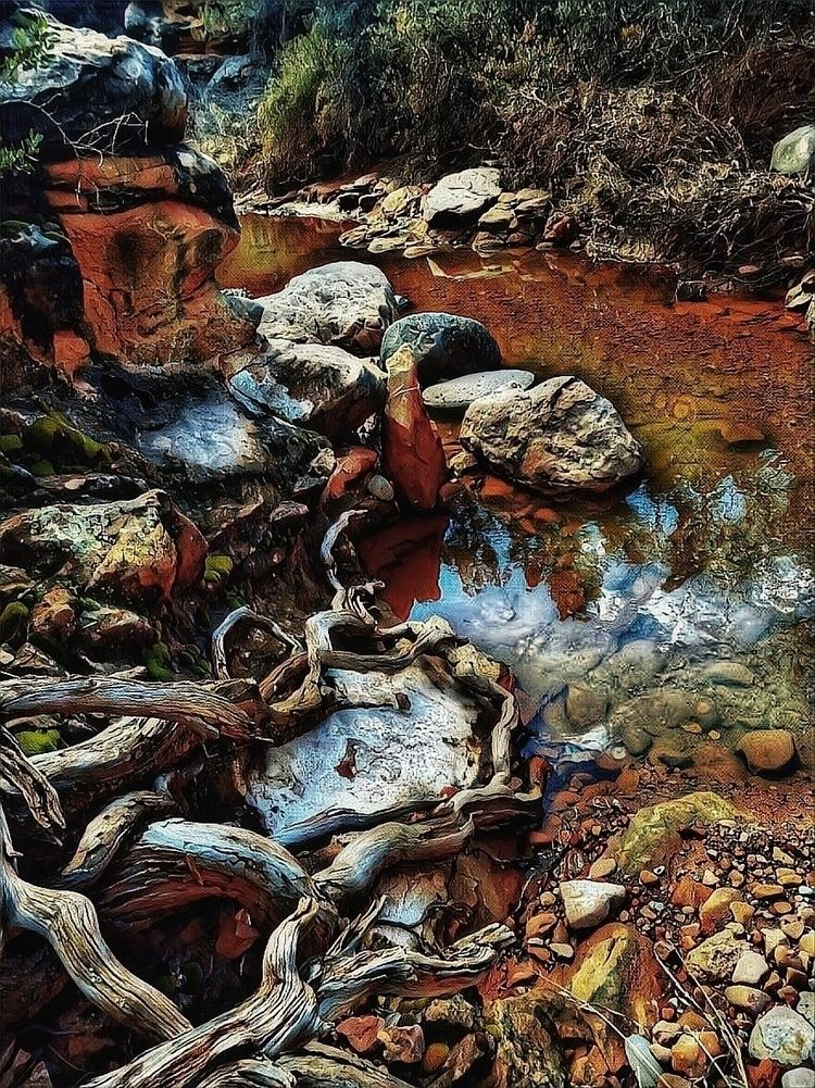 carol canyon - ellosidemark | ello