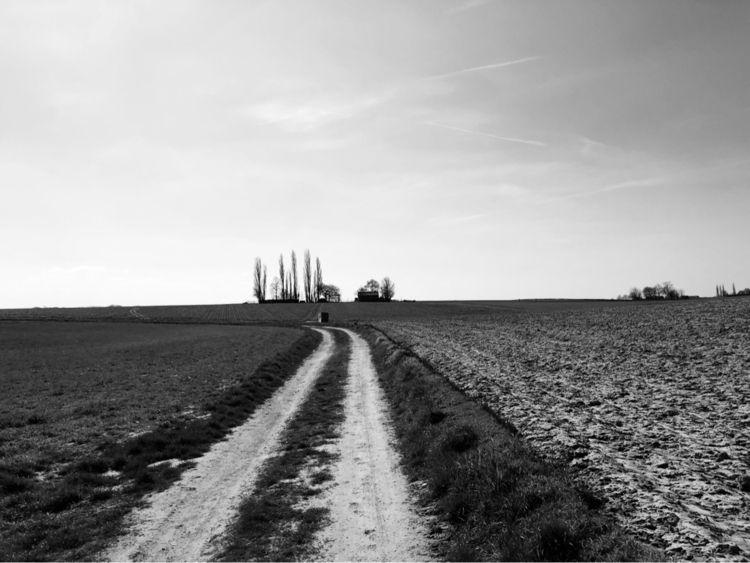 Hiking hills South-Limburg... m - petermoors | ello