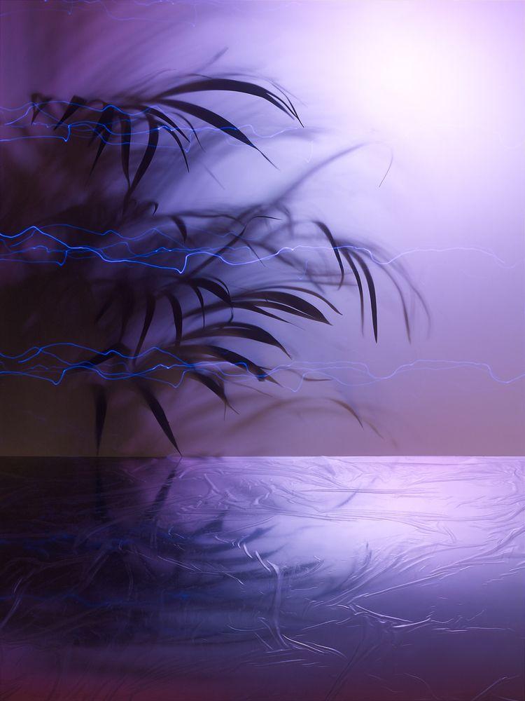 Synthetic Landscapes - palast   ello
