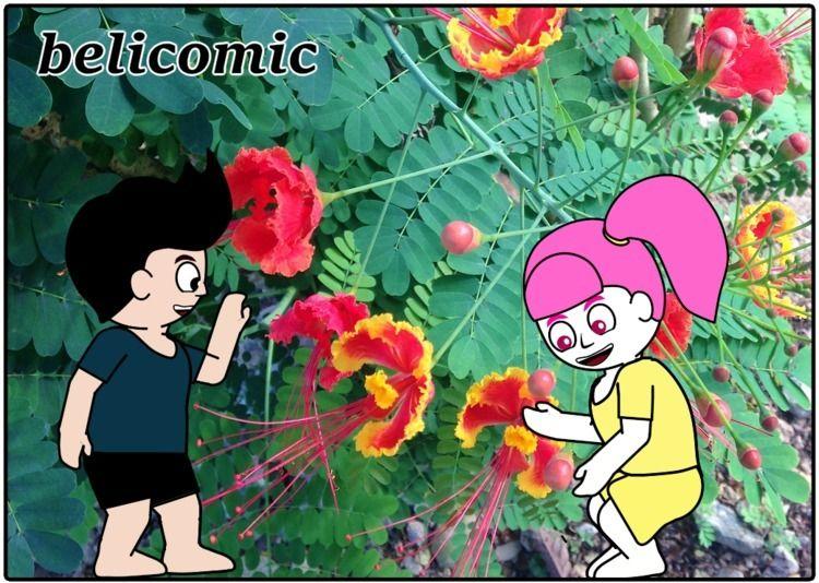 garden, flower. spring. 庭にとって君は - belicomic | ello