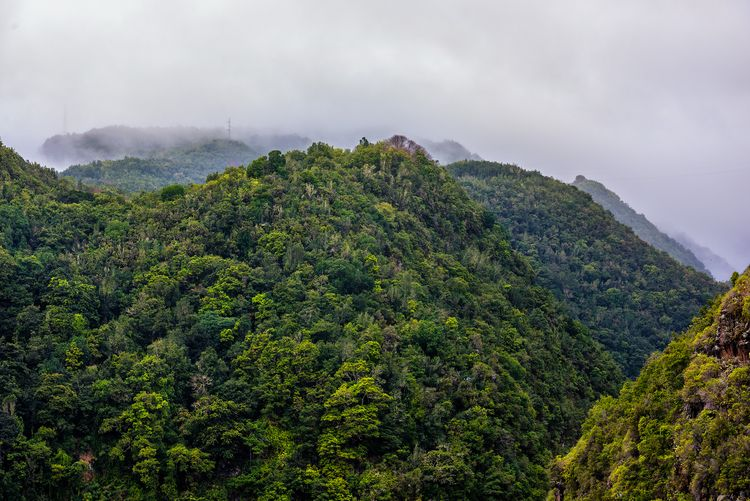 gods alive kicking Palma Island - christofkessemeier | ello