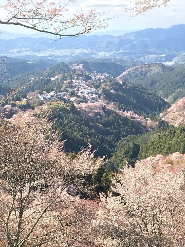visited Mount Yoshinoyama(Yoshi - kayamoto | ello