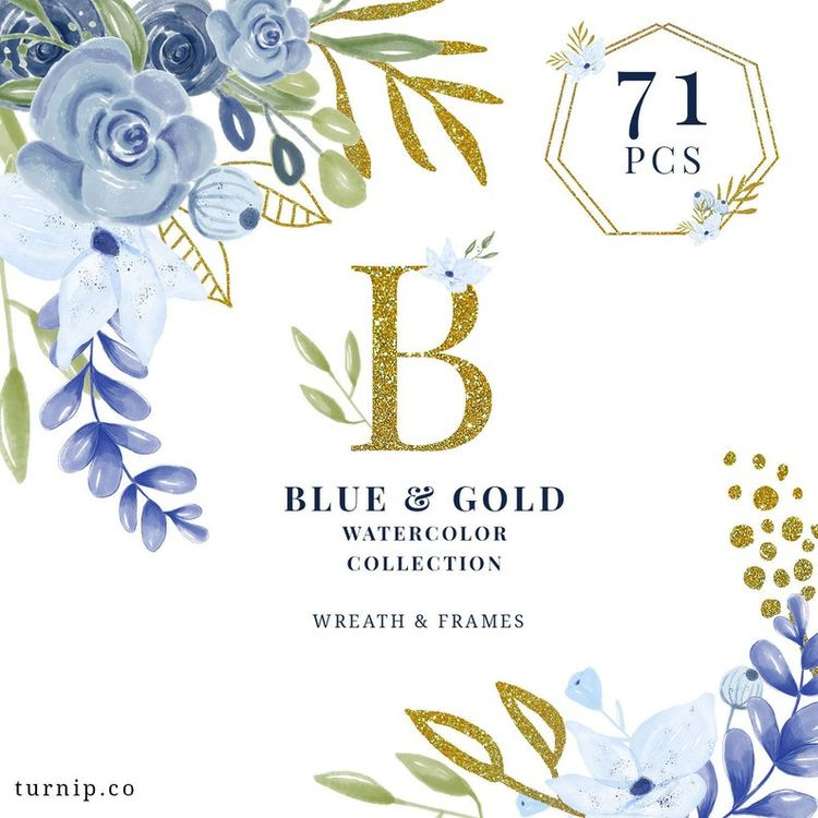71 Blue Gold Watercolor Collect - turnipco | ello