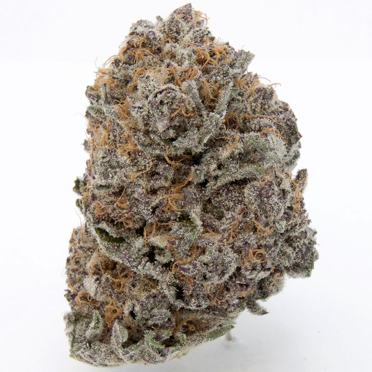 Purple God Yaletown Flower Co.  - greenz | ello
