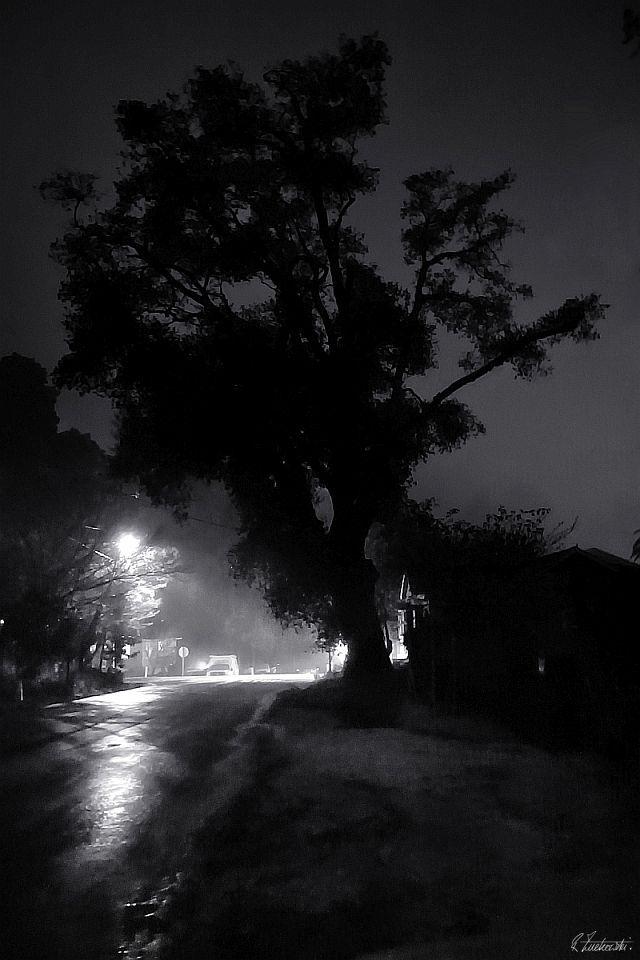 night light - robzucho,, nightlife - abstractcolorism   ello