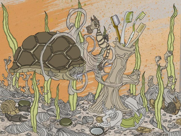 Shell Turtle - Seahorsey stumbl - ristoky | ello