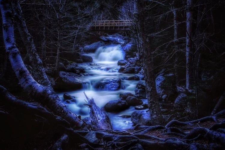 Hiking White Mountain National  - andrewnoiles | ello