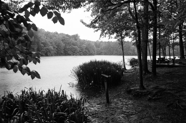 Man Nature. 2019 - film, 35mm, blackandwhitephotography - jonathankobler   ello