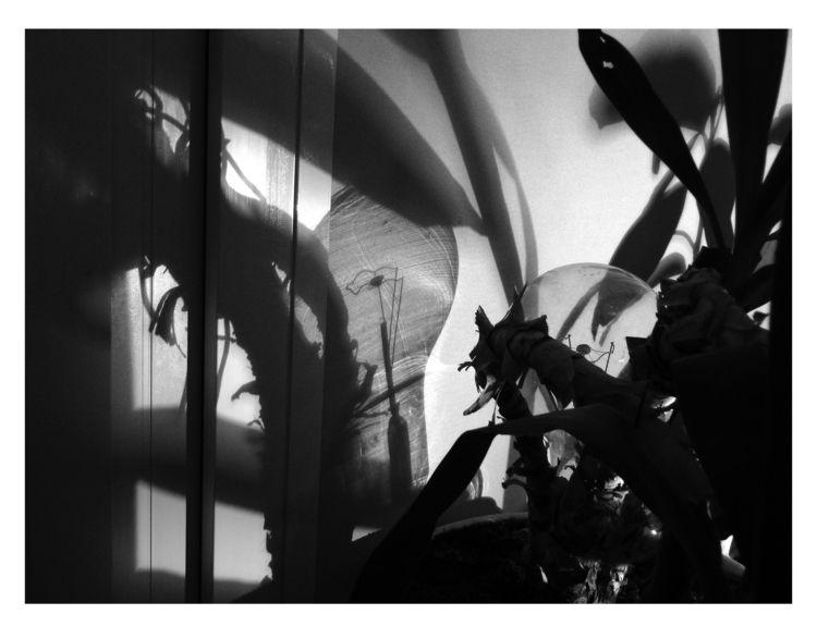 Encounter - bw, bnw, blackandwhitephotography - brthelemy | ello