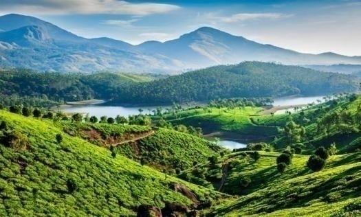 Munnar place spending honeymoon - jamesparker7   ello