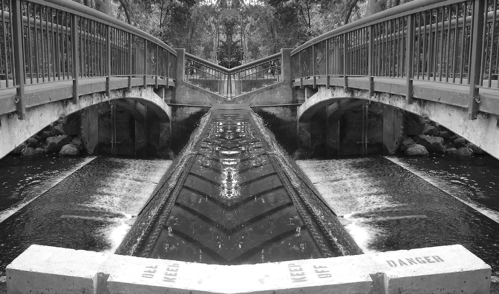 Sycamore Pool .#ello.. .#digita - zygzwurx   ello