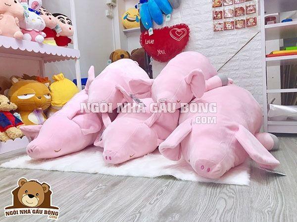 Lợn bông là mẫu thú nhồi đang h - ngoinhagaubong | ello