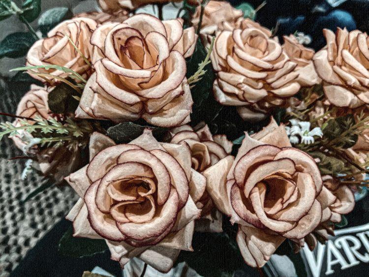 Roses Hollywood - scalzi   ello