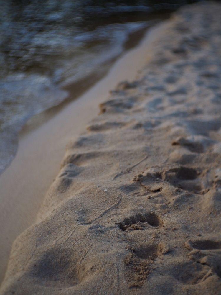 Walking town. Missing long - Kauai - dyni_ma | ello