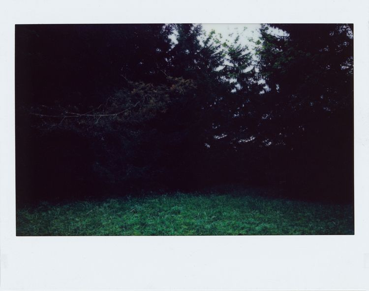 untitled 2019 - instax, photography - veromarsk | ello