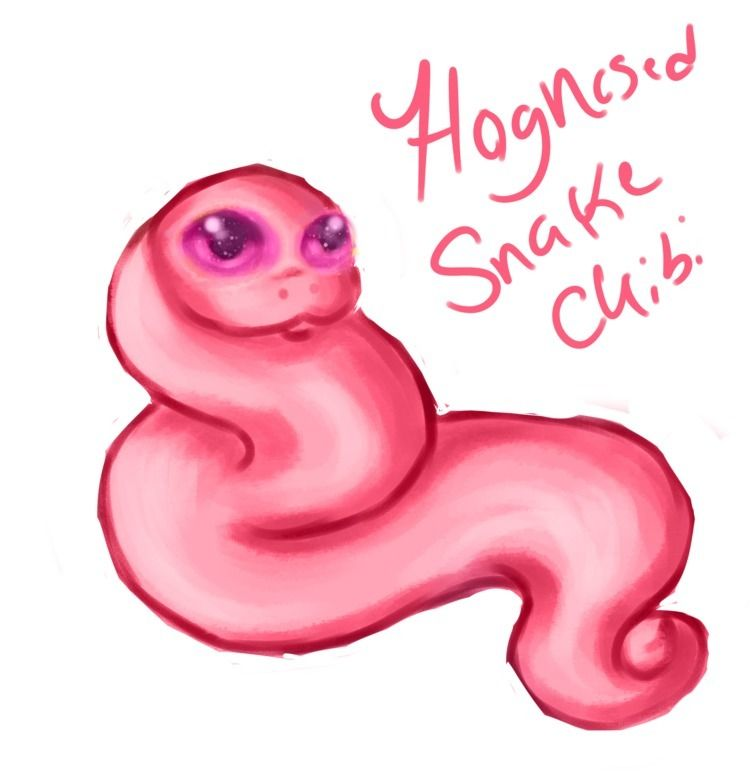 snake doodle noodle - mamabunny   ello