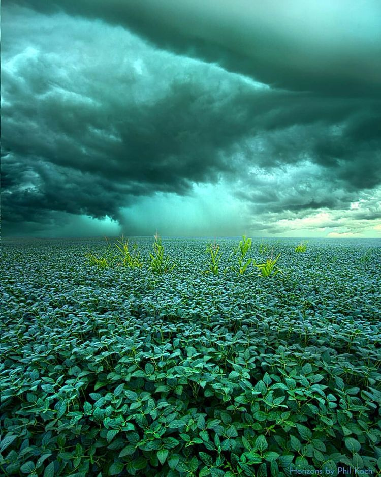 Amazing Photography Phil Koch - Wheather - landsphoto | ello