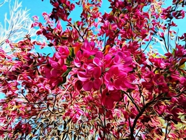 Pink spring blossoms - picsart, oilpaintingfilter - jonlh | ello