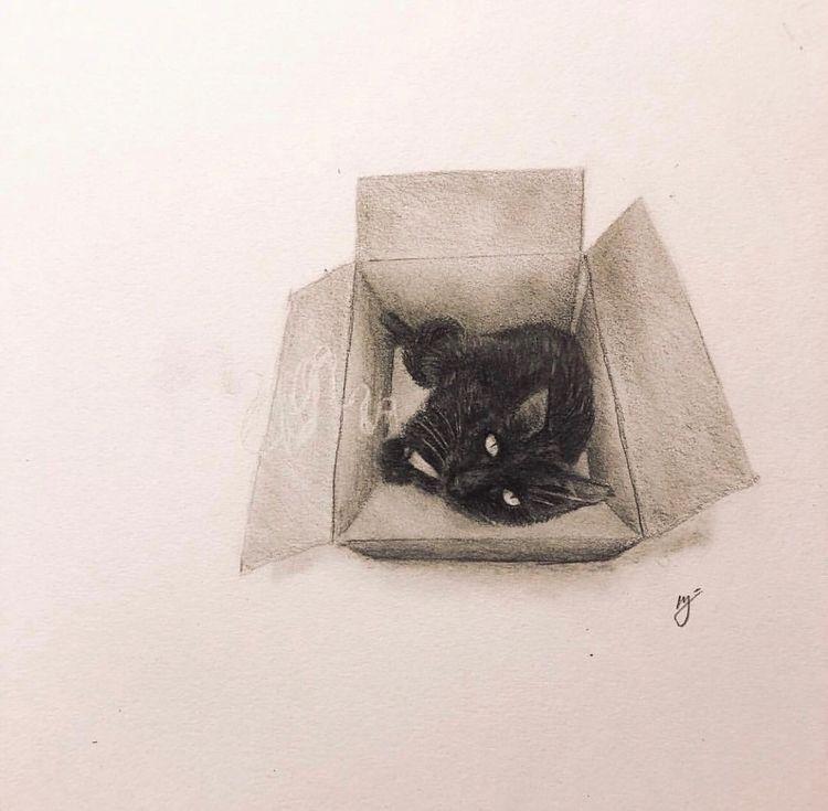 Hot box - cat, hotbox, sketch, sketchbook - mindsketchin | ello