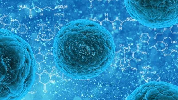 stem cell treatments outpatient - drandrewliption   ello