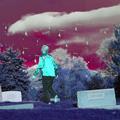 Barefoot John Whipple (@jpwhipple) Avatar