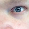 Trent (@trentwilkie) Avatar