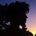 Benji Blow (@benjibouton) Avatar