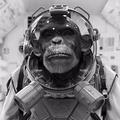Rob Hoekman (@_robhoekman) Avatar