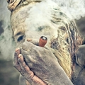 Sanjay Chitranshi (@sanjay1965) Avatar