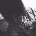 Lily (@lilyjfr) Avatar