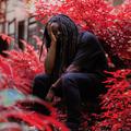 Black Dave (@blackdave) Avatar