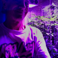 Mark Orey (@markz350) Avatar