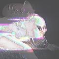 Mauricio Siller (@adicto_al_caos) Avatar
